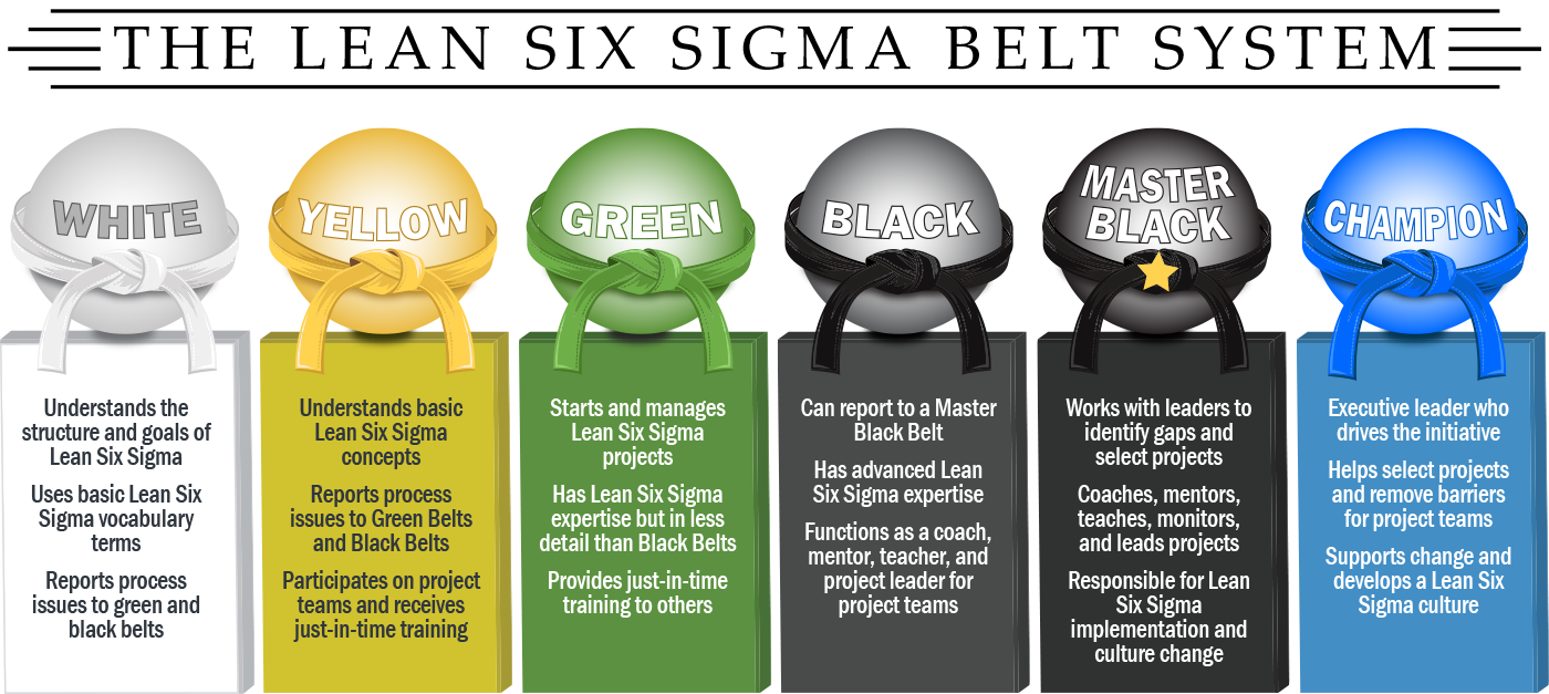 Champions in a Lean Six Sigma Belt System